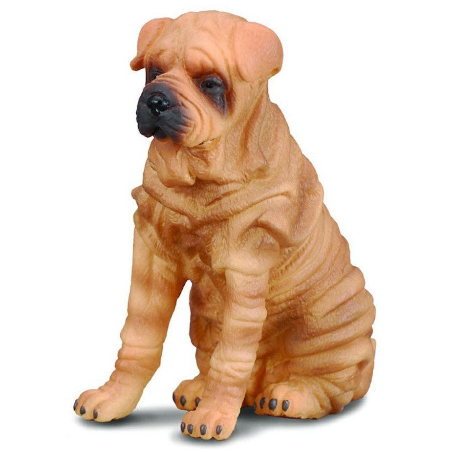 CollectA Shar Pei CollectA CO88193 Prezzo € 6.5